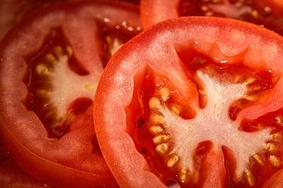 The Easiest Way To Grow Tomato Seedlings